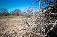 Em recuo, Ministério do Meio Ambiente confirma reunião da ONU em Salvador