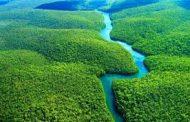 ONG mostra como governos ameaçam unidades de conservação da Amazônia