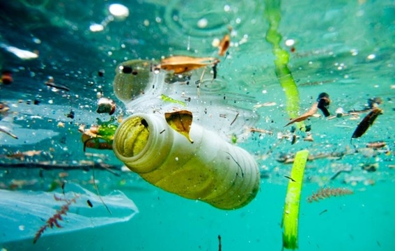 Pesquisa mostra que plástico no fundo do mar não se decompõe