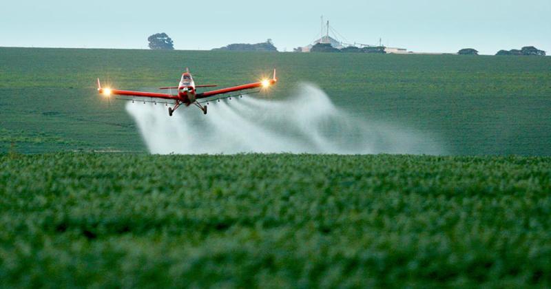 Anvisa encontra agrotóxicos acima do limite ou proibidos em 23% dos alimentos do país